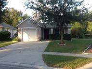 2610 Golden Antler Lane Lutz FL, 33559