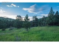 220 Solitude Ct Glen Haven CO, 80532