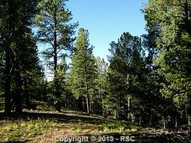 221 Woodrock Way Divide CO, 80814