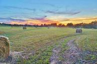 000 Country Trail Quitman AR, 72131