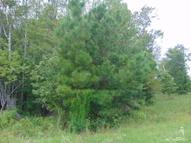 4.02 Acres Ruffin Lane Supply NC, 28462