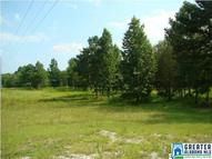0 Richeytown Rd 15 Ac Munford AL, 36268