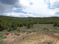 Tbd Elk Reserve Road Glade Park CO, 81523