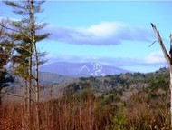 Lot 2 Taft Hill Trace Townshend VT, 05353