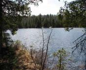 Lot D Tom Lake Rd Hovland MN, 55606