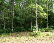 Lot 20 Pine Grove Estates Lerona WV, 25971