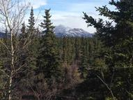 Nhn Hilltop Road Lot 1 Healy AK, 99743