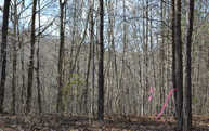 119 Hideaway Trail Lot 58 Copperhill TN, 37317