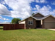 1740 San Miguel Norwood CO, 81423