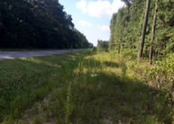 0 County Road 43 Clayton AL, 36016