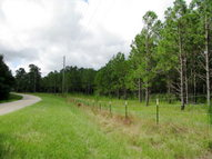 N/A Cottonhill Road Fort Gaines GA, 39851