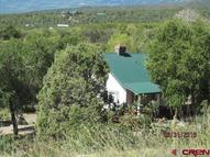 22010 Highway 65 Cedaredge CO, 81413