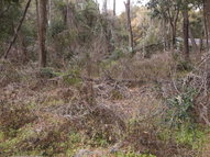 2 Lots 5th St Chiefland FL, 32626