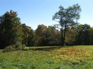 Lot A Calvin Cole Rd Stephentown NY, 12168