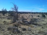 Lot 739 Off Pumphouse Road Seligman AZ, 86337