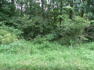 Lot 10  Roy Holder Rd Austin KY, 42123