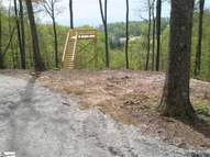 Section 3 Lot 123 Mossy Glen Drive Landrum SC, 29356