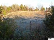 Lot 2 Old Newport Hwy Sevierville TN, 37876