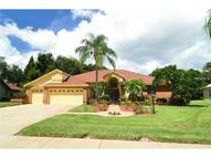 762 Litchfield Lane Dunedin FL, 34698