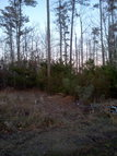Lot 92 Dowry Creek E. Rocky Mount NC, 27801