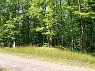 Tbd Lower Bluff 7 Norway MI, 49870