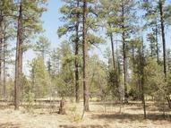 4704 Mountain Gate Circle Lot 115 Lakeside AZ, 85929
