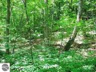 Lot 4 Spring Valley Road Beulah MI, 49617