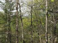 00 Lot #273 Shannons Walk Section #2 Lake Lure NC, 28746