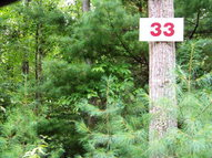 Lot 33 Pine Grove Estates Lerona WV, 25971
