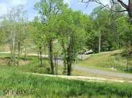 Lot 6 Scott Branch Drive 6 Danbury NC, 27016