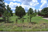 - Eagle Ridge Rd Alto NM, 88312