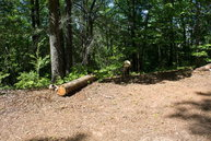 Lot 2 Echo Lane North Old Fort NC, 28762