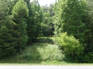 Lot A, B, C Highway 515 Cherry Log GA, 30522