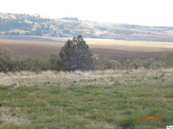 Tbd Harvest Court Lot 1 Sky View Estates Moscow ID, 83843