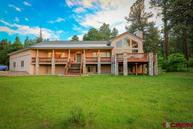 80 Fremont Pagosa Springs CO, 81147