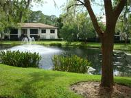 3380 Crystal Court E F Palm Harbor FL, 34685