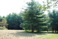 Lot #9 Alta Vista Lane Sparta NC, 28675