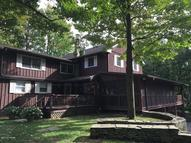 1346 Whitney Hill Road Thompson PA, 18465