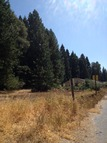 .7 Acre Red Hook Trail Pollock Pines CA, 95726