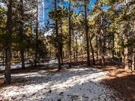 Tbd Lot 1: Westwoods @Pine Valley Evergreen CO, 80439