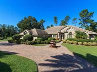 270 Snowfields Run Lake Mary FL, 32746