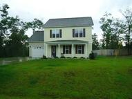 106 Blueberry Fields Road Maple Hill NC, 28454
