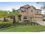 20019 Outpost Point Drive Tampa FL, 33647