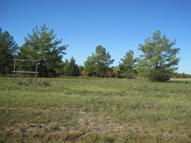 7.34 Acres Edmiston Drive Crockett TX, 75835