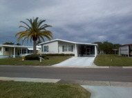 Address Not Disclosed Palm Harbor FL, 34684