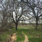 1800 Poolville Cut Off Road Poolville TX, 76487
