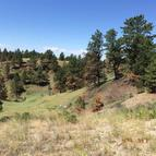 Lot 65 Pine Crest Reed Point MT, 59069