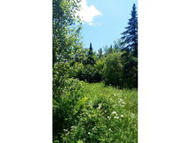 Map 213 Lot 9.1 Bickford Hill Rd Sugar Hill NH, 03586