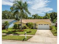 10641 117th Lane Seminole FL, 33778