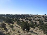 Lot 121 Chevelon Canyon Ranch 1796 Potato Pass Rd Heber AZ, 85928